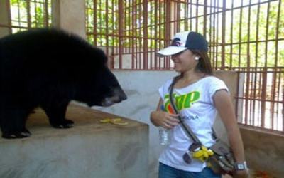 Talk to a Bear in Tiger Temple